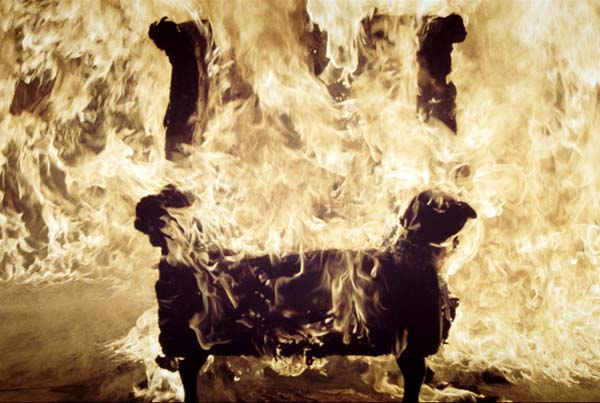 Koree feat. Flaze & Alexis Troy – Feuerwerk